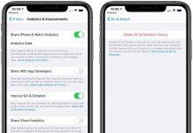 Delete Siri History in iOS 13 or iPadOS 13